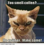 funny angry cat do you smell coffee me neither make some | Funny ... #meWithoutCoffeeQuote