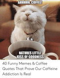 AHHHHH COFFEE! NATURES LITTLE KISS OF GOODNESS 40 Funny Memes ... #meWithoutCoffeeQuote