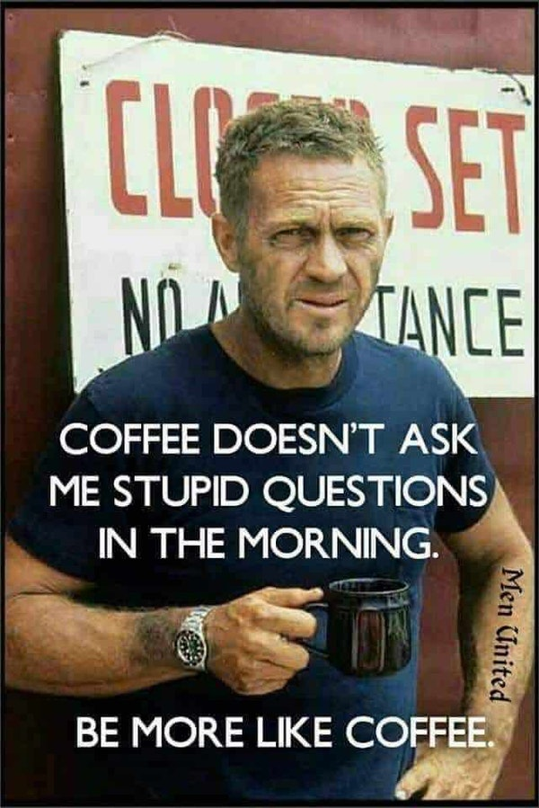 Funny coffee doesn't ask stupid questions coffee image