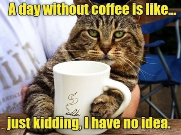 haha. A funny day without coffee meme image