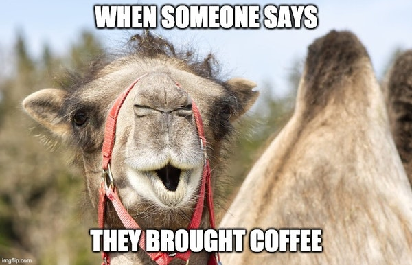 When someone says they brought coffee funny meme.