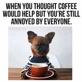Funny when coffee would help but still annoyed meme