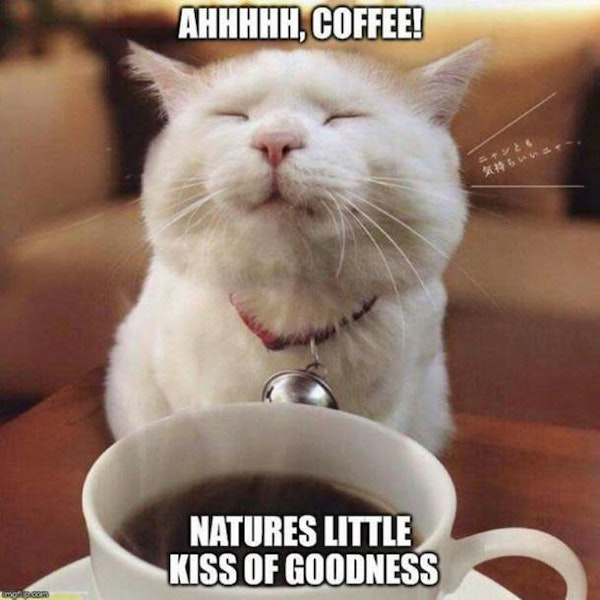 funny coffee natures goodness coffee meme