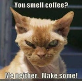 You smell coffee? Me neither. make some funny coffee image meme