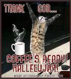 I Love Coffee - Thank God... Coffee's Ready! Hallelujah! Cat meme coffee quote ... #iLoveCoffee