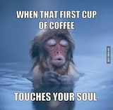 471 Best Coffee Memes images in 2019 | Coffee Lovers, I love ... #iLoveCoffee