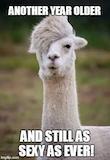 Top 100 Original and Funny Happy Birthday Memes #birthdayCoffee