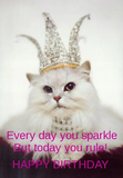It's all about being the princess!   Cat Lover   Happy birthday ... #birthdayCoffee