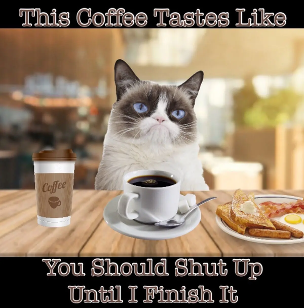 Grumpy Cat Coffee Memes   Coffee in 2019   Grumpy cat humor ... #funnyCoffee