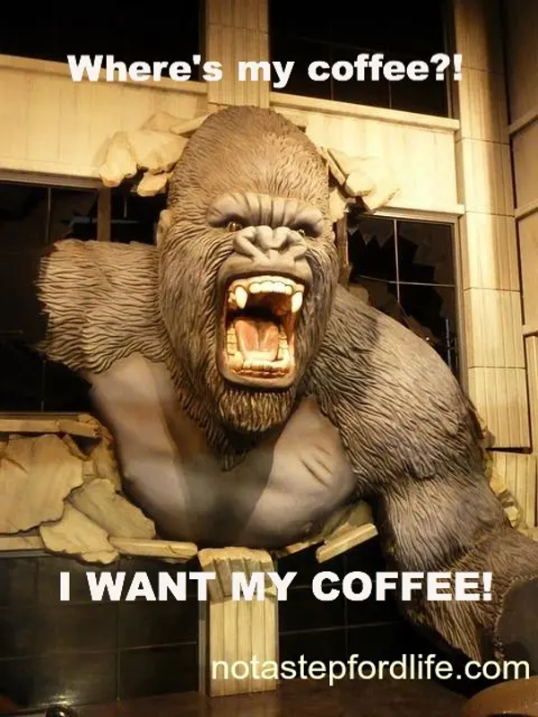 20 Funny Coffee Memes That'll Perk Up Your Day   SayingImages.com #funnyCoffee