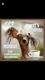 Sarcastic Coffee - Monday Coffee   Need Coffee Pics/Quotes/Signs in 2019   Funny good ... #sarcasticCoffee