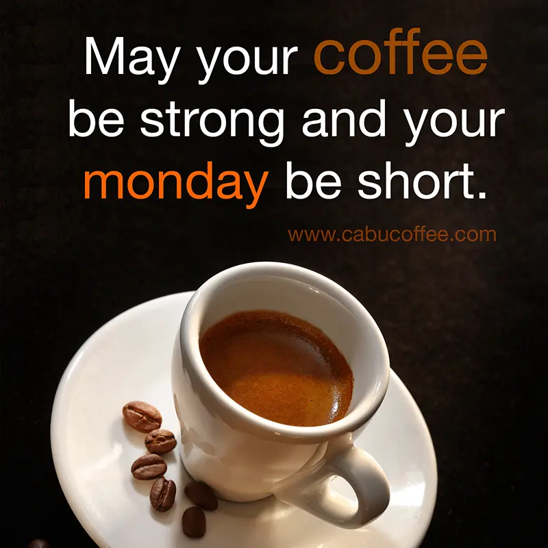 A monday coffee meme. On mondays, this is how I feel... #mondayCoffee