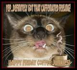 "Sips & Sarcasm Gourmet Coffee on Twitter: ""Happy Friday my Friends ... #goodMorningCoffee"