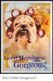 Coffee TIME Good Morning Gorgeous! Got Coffee Gorgeous? | Meme on ... #coffeeTime