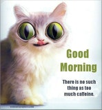 Funny Good Morning Quotes #sweetMorningCoffeeQuote